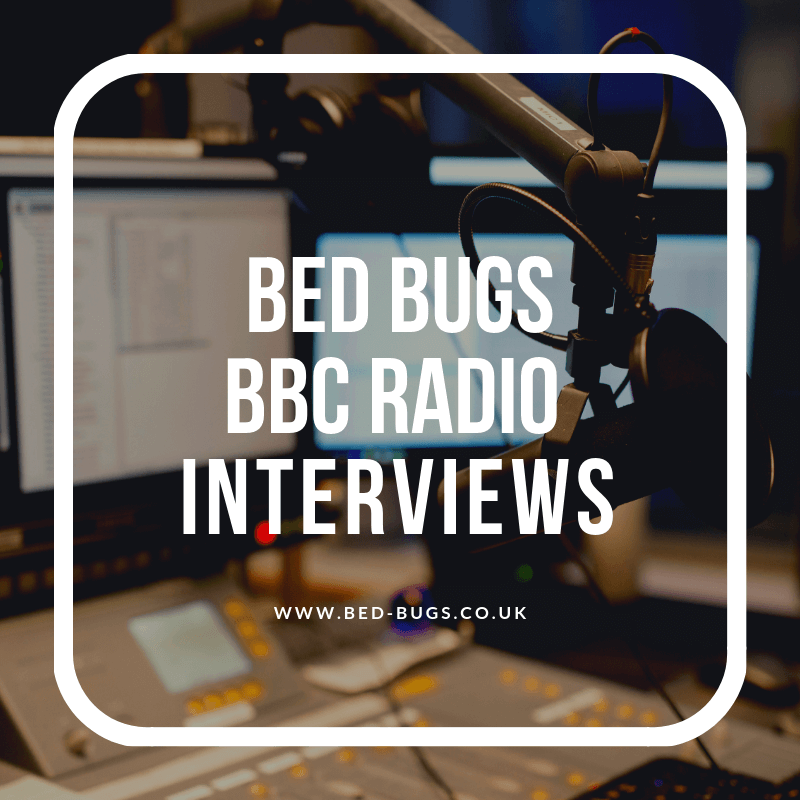 radio interview with david cain discussing the increasing bed bug infestations