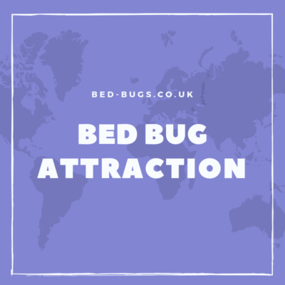 bed bug attraction by Bed Bugs Limited of London